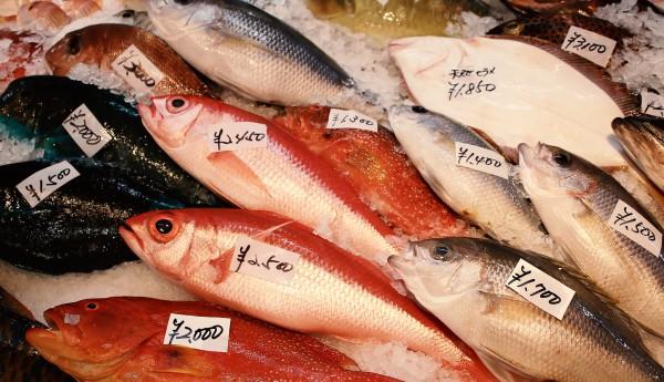 「魚食スペシャリスト検定」