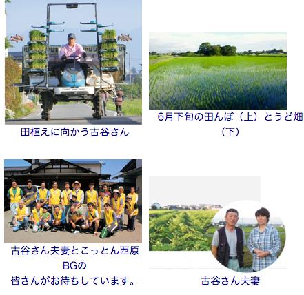 ツアー_トチモニ_とちぎ農産物モニターサイト