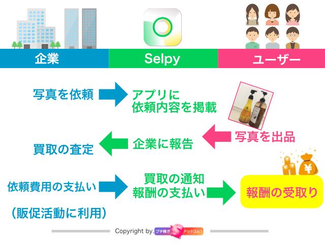 写真が売れる写真販売アプリ「selpy」仕組み・図解_(C)petitkasegi.com